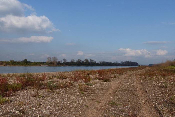 Am Rhein in Köln (Porz-Langel) gibt es Planungen für eine neue Rheinbrücke.